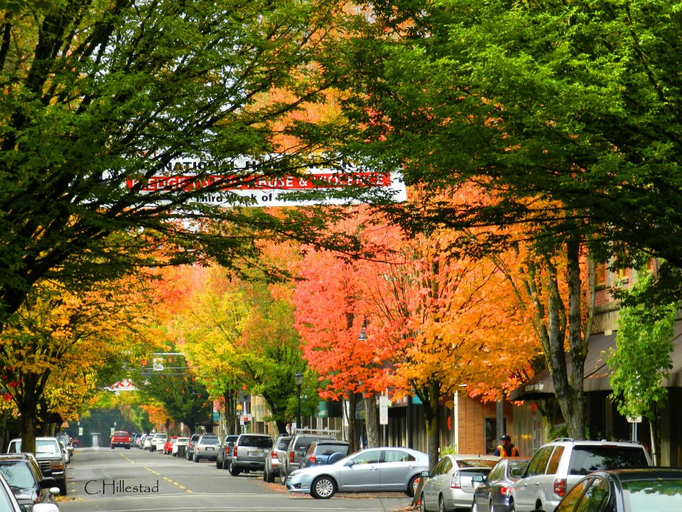downtown mcminnville